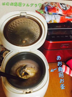 鯵の干物煮込みリゾット.JPG
